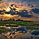Sunset at Circle B Bar Reserve in HDR by MKWhite