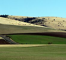 Farming Riches...Outside Pendelton, Oregon by trueblvr