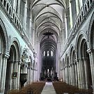 The Bayeux Cathedral (2) by Larry Davis