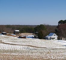 Snow Finally Came to Danville, Virginia by BCallahan