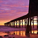 Catherine Hill Bay Jetty by Len  Gunther