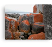 Rocks and Orange Lichen, Binalong Bay,Tasmania, Australia. Canvas Print