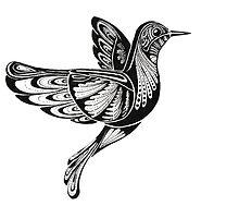 Bird by Francisco Machado