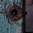 Rusty Lock by Debra Fedchin