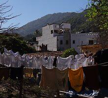 Washing In The Morning - Lavado En La Mañana by Bernhard Matejka
