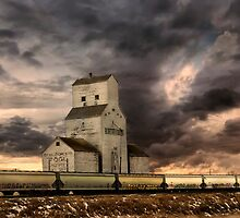 Grain Elevator by Mindy McGregor