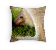 JOEY in mummy KANGAROOS pouch (wee skippy) Throw Pillow