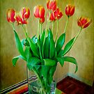 Spring Tulips by Anne  McGinn
