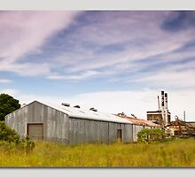 Taree Peters Factory nsw by kevin chippindall