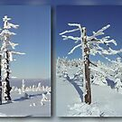 A diamond-dust day at the Smrk mountain (diptych) by Lenka