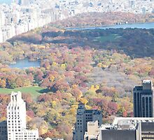Central Park, Fall View, As Seen from Top of the Rock Observation Deck, New York by lenspiro