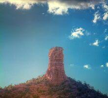 Rockus Viagrus by Bob Larson