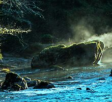 Afternoon sun warming the rock on Skagit River WA. USA by Uri Z. Fogel