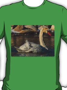 Mute Swan T-Shirt