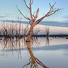 Lake Mokoan • Victoria • Australia by William Bullimore