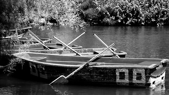Row Your Boat by Deb Maidment