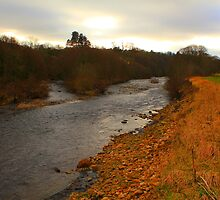 The River Tees on a cloudy afternoon, between Winston and Whorlton.  by Ian Alex Blease