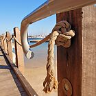 Edge of the Boardwalk by kalaryder