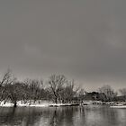 Gray Skies by jrwyatt