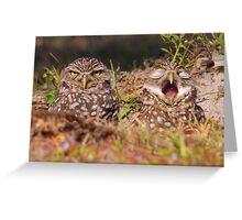 We Hate Mornings - Burrowing Owls Greeting Card
