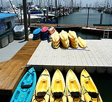 Kayaks - Santa Barbara Harbor by Ross Campbell