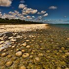 Lake Clifton - Living Rocks by Leah Kennedy
