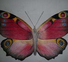 peacock by Gez Sullivan