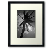 Palm Flare Framed Print
