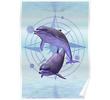 Star Sign .. Pisces Poster