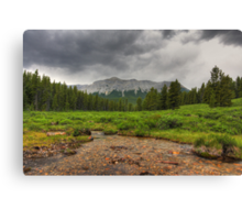 River, mountains and forest (HDR) Canvas Print