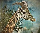 Goataffe by Yampimon