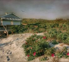 Gooseberry Beach Plum by Robin-Lee