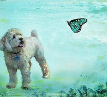 A Dog's Dream by Barbara Manis