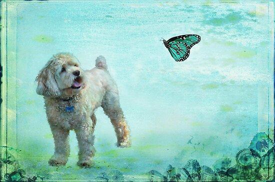 A Dog's Dream by Barbara Manis
