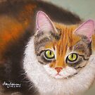 Sweetheart Kitty by Hilary Robinson