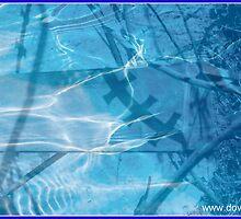 Aqua by dblower200