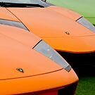 Lamborghini by Jill Reger