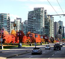 Autumn in Downtown Vancouver, Canada by Carole-Anne