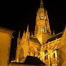 The Bayeux Cathedral at Night  (2) by Larry Lingard-Davis