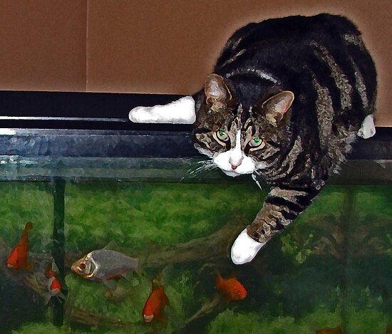 Something Fishy by nikspix