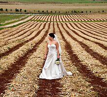 Bride on farm by Kathleen Hill