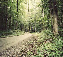A Path Less Taken by XxJasonMichaelx