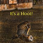 It's a Hoot! (IPhone case) by DeerPhotoArts