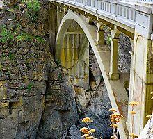 Lake Chelan Bridge by richchop