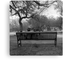 Bench Talk Canvas Print