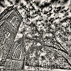 "Birregurra ""Bluestone"" Church by LJ_©BlaKbird Photography"