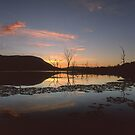&quot;Live&quot;  Lake Somerset, QLD - Australia by Jason Asher