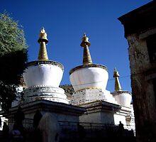 Tibet, Potala Palace, Lhasa by tmcknzld