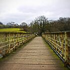 Across the Bridge by James Taylor