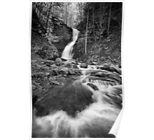 Cathedral Falls BW Poster